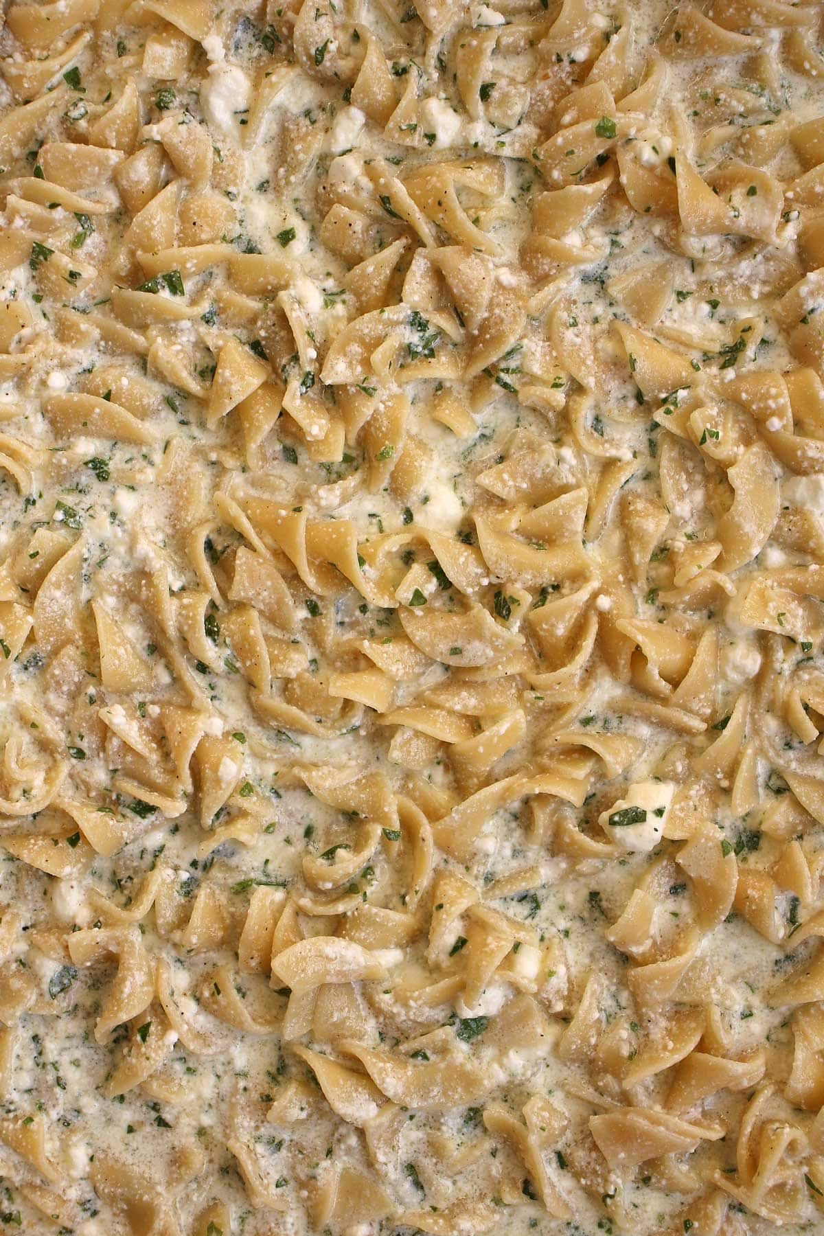 Closeup of egg noodles mixed with milk, feta cheese, and parsley in a baking pan.
