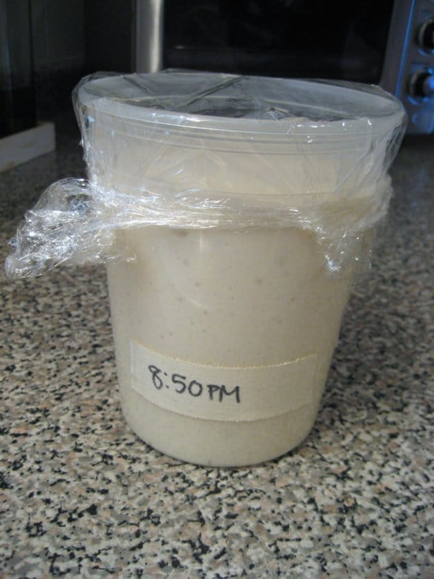 a plastic quart container filled with bread starter that has expanded almost to the top