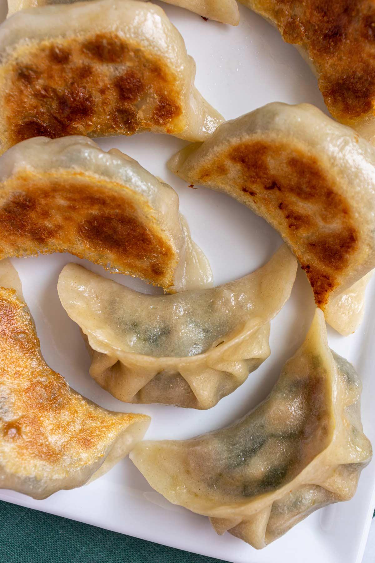 Closeup of pan-fried vegetable dumplings on a white plate.