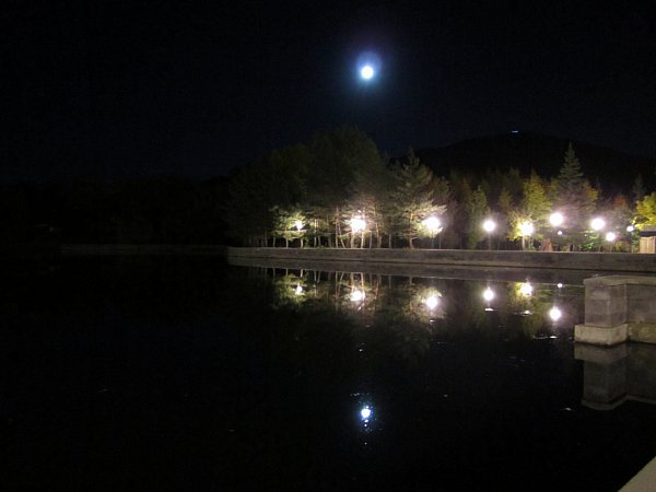 nighttime view of a lake with the reflection of the moon, lamps, and trees