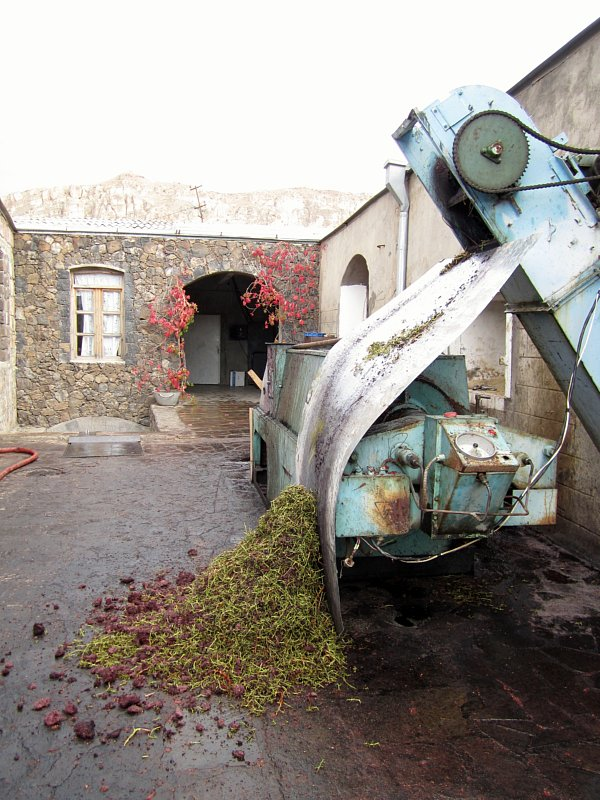 An old stone building with a pile of grape stems on the ground