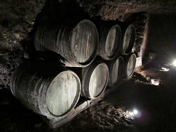 a dark room with wooden barrels lining a wall