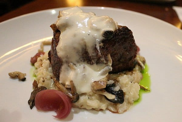 filet mignon steak with creamy sauce served on top of mushroom risotto