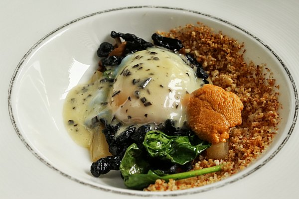 a poached egg with breadcrumbs and greens in a white dish