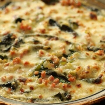 closeup of a bubbly creamy gratin with pieces of diced ham and Swiss chard peeking through