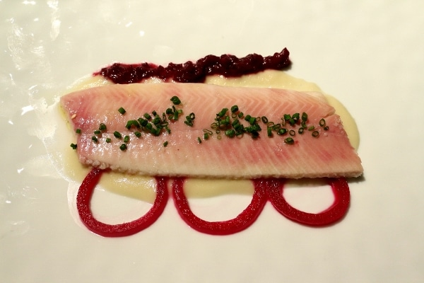 a fish fillet over a white puree with rings of red pickled onion