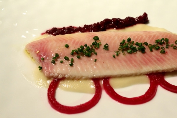 a closeup of a fillet of fish over a white puree with red pickled onion