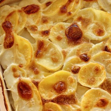 Closeup of French potato gratin dauphinois with bubbly browned top in a casserole dish.