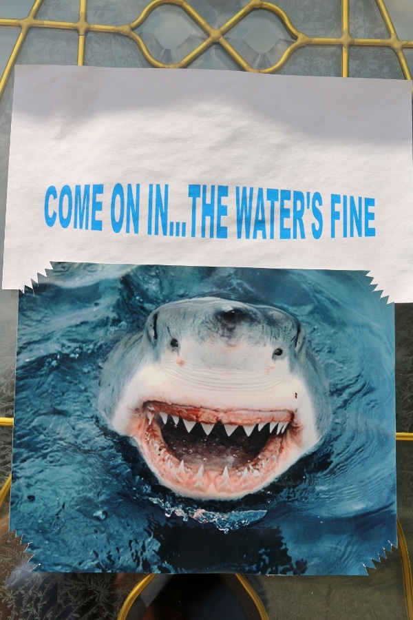 a picture of a shark that says come on in the water\'s fine
