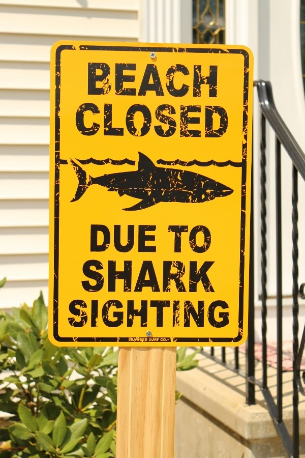 a yellow sign that says Beach Closed Due to Shark Sighting