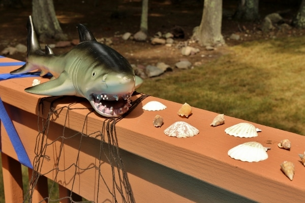 a closeup of a shark figurine with shells on the edge of a deck