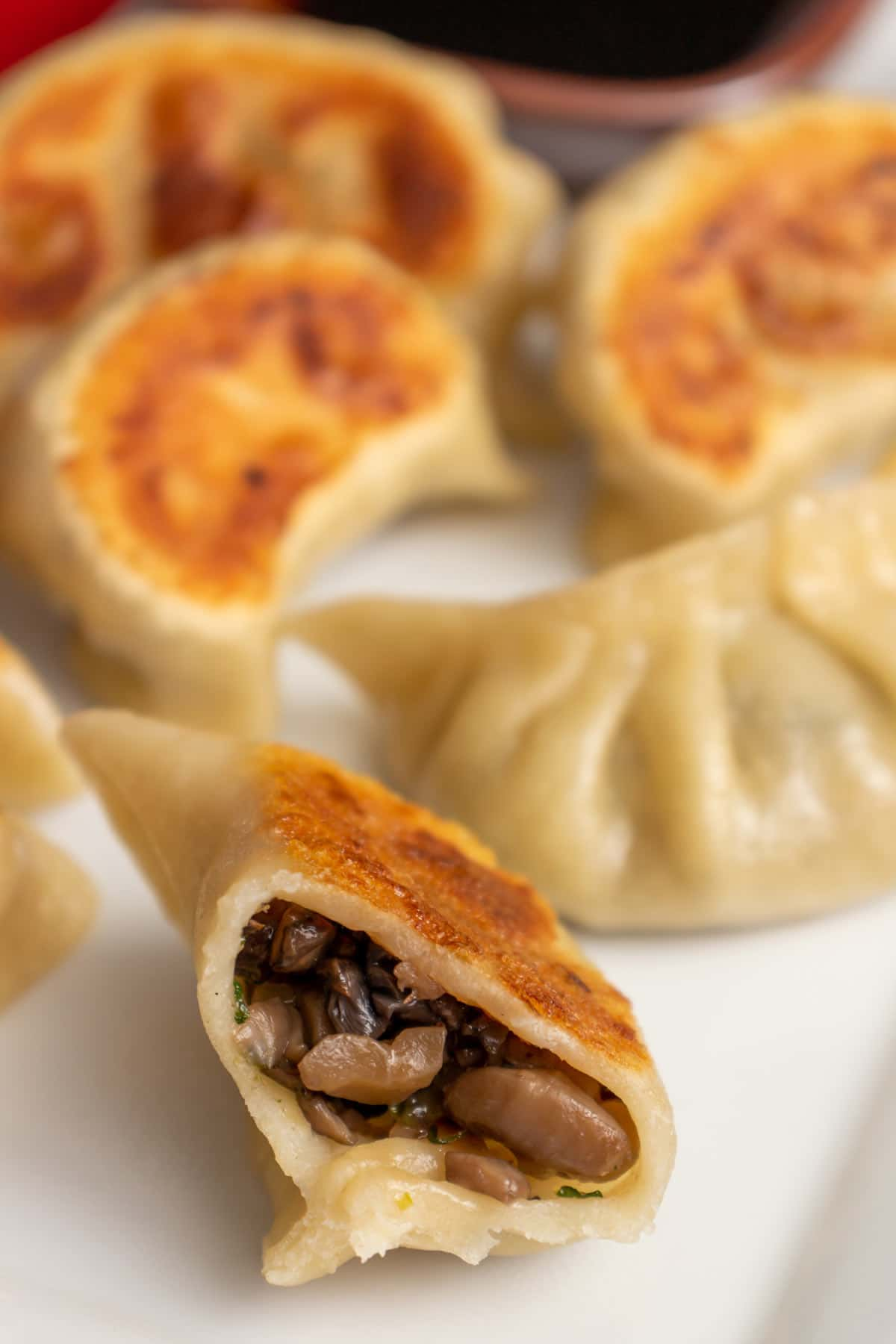 Closeup of a half-eaten pan-fried dumpling showing off the brown mushroom filling.