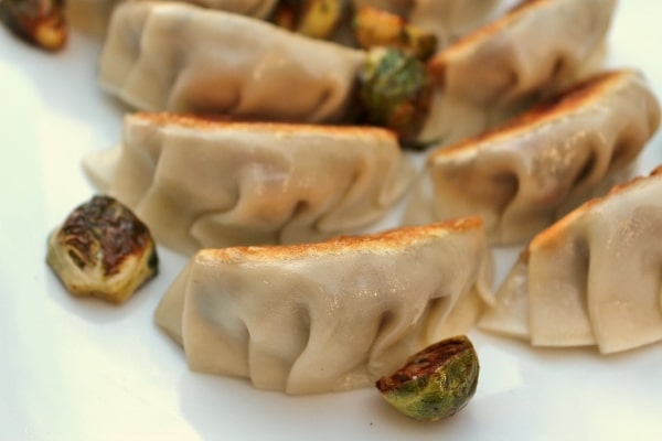 a closeup of pan-fried dumplings on a white plate with roasted brussels sprouts