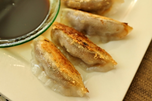 a closeup of pan-fried dumplings fanned out on a plate