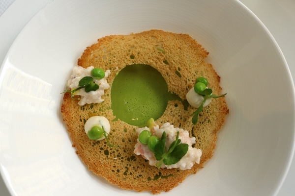 overhead view of pea soup topped with a lacy cracker and dollops of shrimp custard