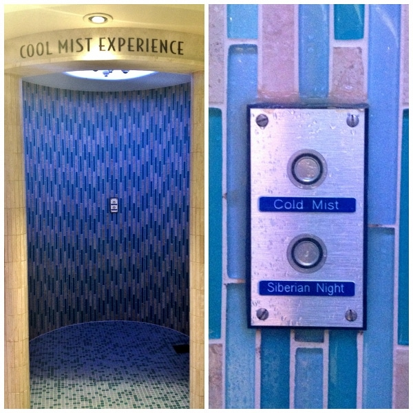 the Cool Mist Experience shower with two temperature settings cold and colder