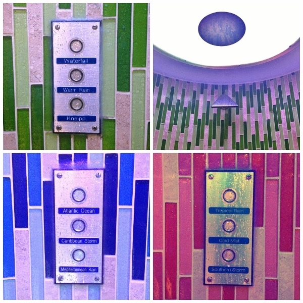 A closeup of the shower controls inside the various Rainforest Room showers