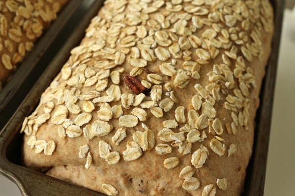 a loaf of unbaked bread topped with oats in a metal pan after proofing