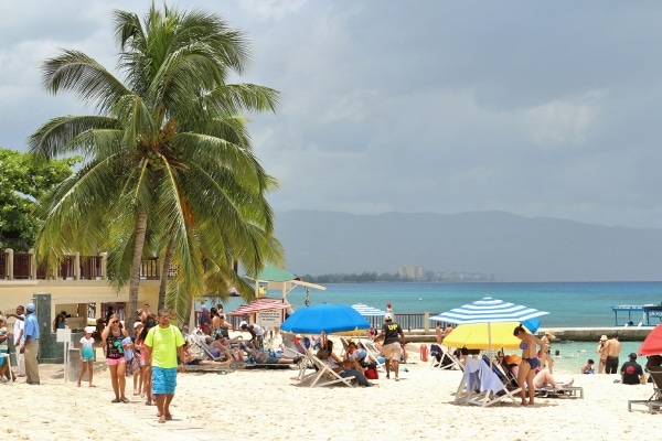A group of people sitting at a beach with palm trees nearby