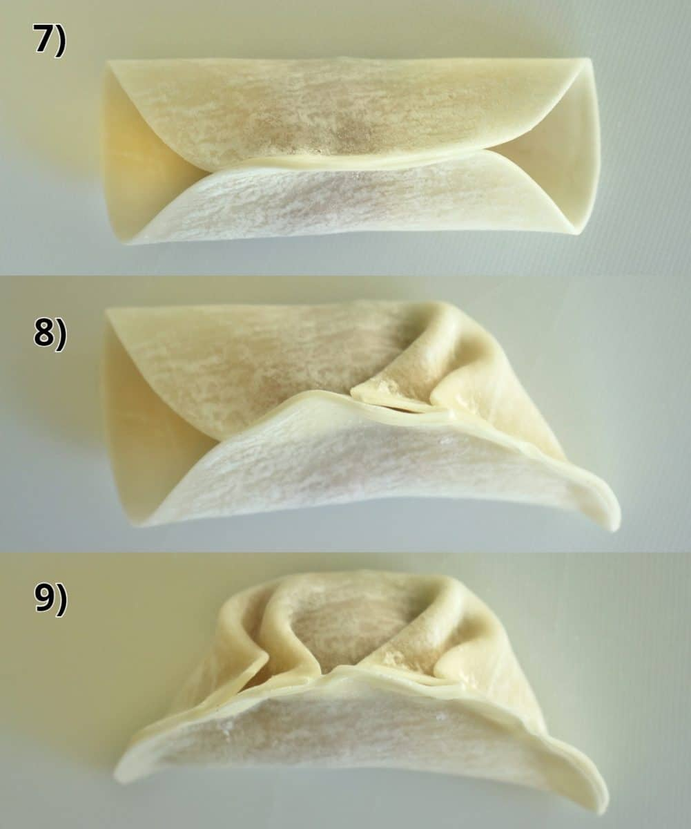 step by step photos of how to pleat an Asian style dumpling