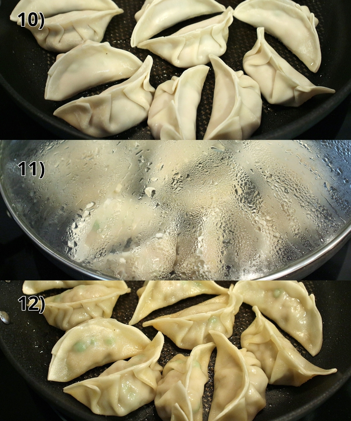 step by step photos of cooking pan-fried Asian style dumplings