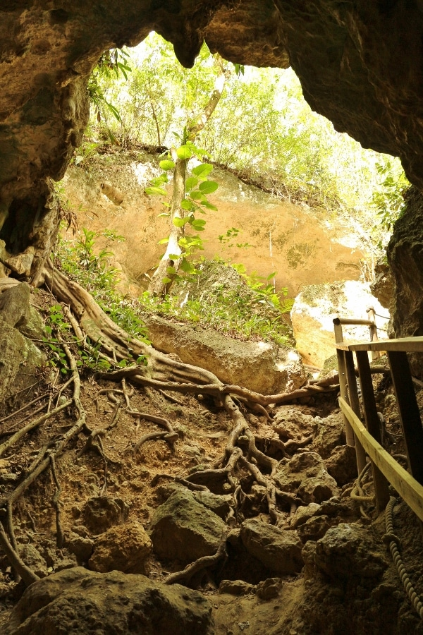 view looking out the entrance of a cave