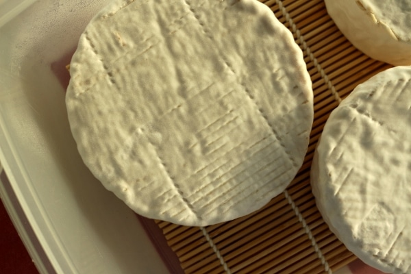a wheel of aging Camembert cheese with mold growth on the exterior