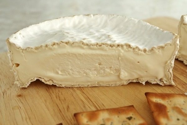 A cross section of a wheel of homemade Camembert cheese