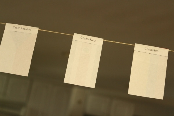 the back of small flag cutouts showing the name of the country each is from