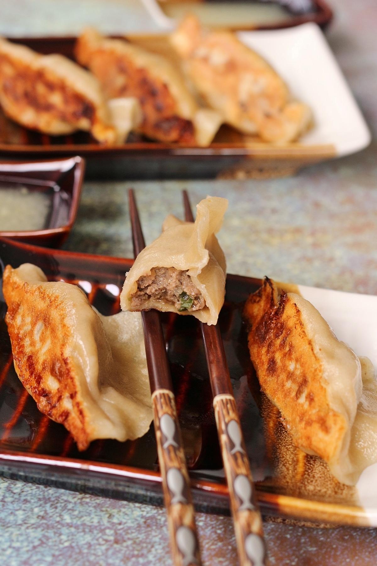 two small plates of pan-fried dumplings with a half-eaten dumpling resting on chopsticks