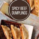 overhead closeup of pan-fried dumplings on small rectangular plates