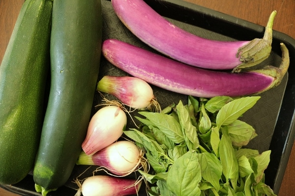 zucchinis, Japanese eggplants, onions and basil on a tray