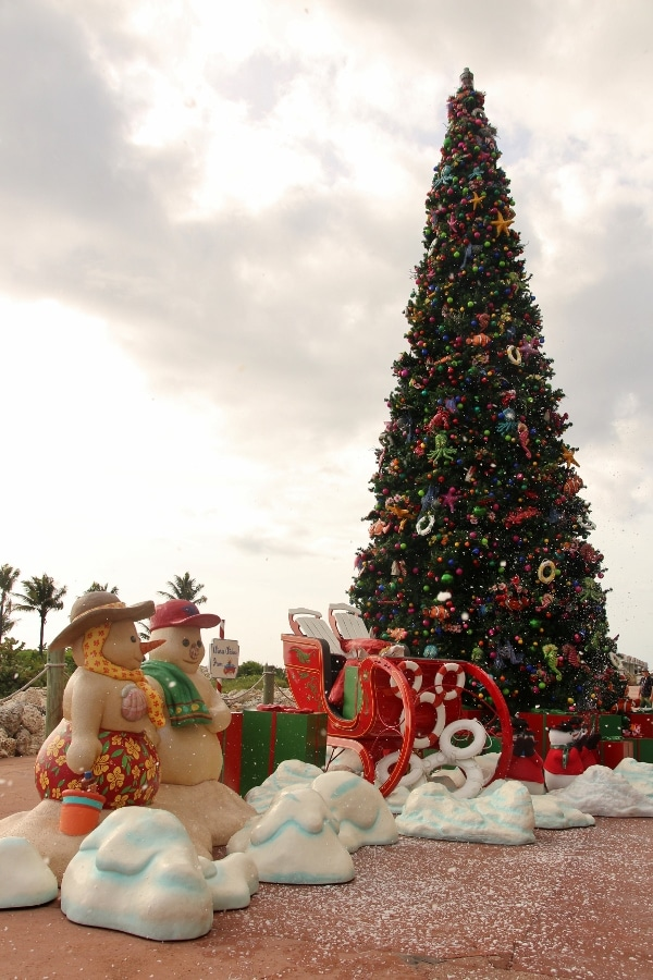 a Christmas tree and holiday decorations on Castaway Cay