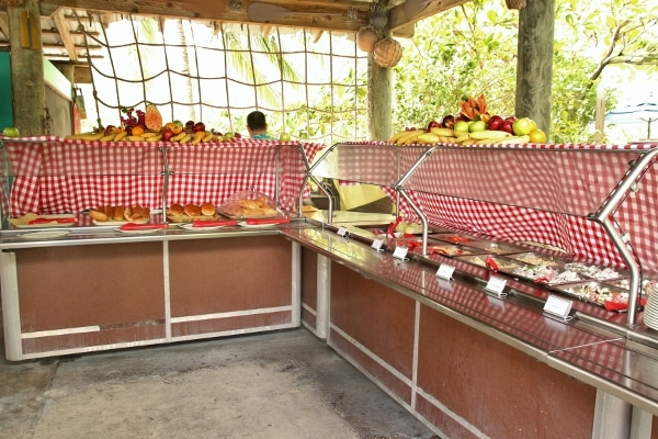 wide view of an outdoor food buffet