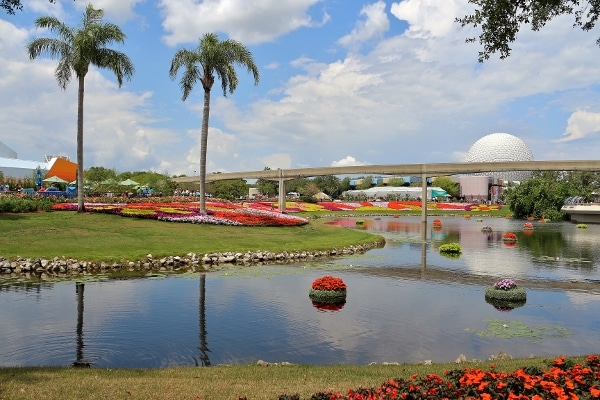 A group of palm trees next to a lagoon, with colorful flowers all around