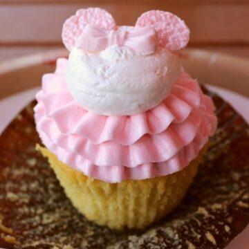 Cupcate at Capt Cook's at Disney World