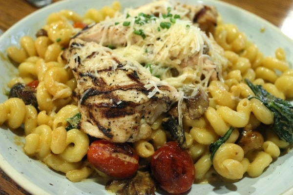 closeup of a plate of pasta with grilled chicken