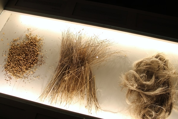 a display of straw and cloth fibers
