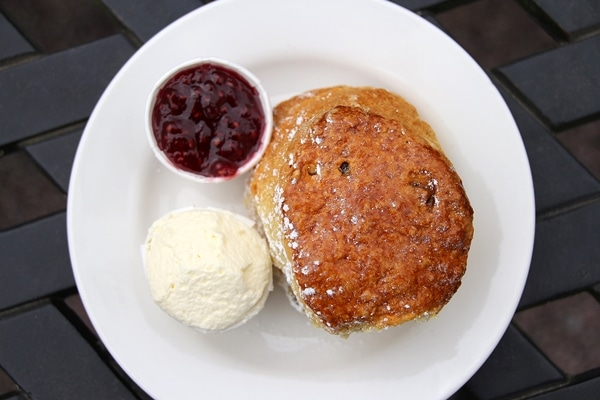 overhead view of a large scone on a plate
