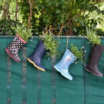 A boot garden in Ireland