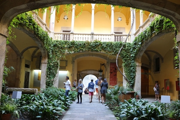 a courtyard filled with plants