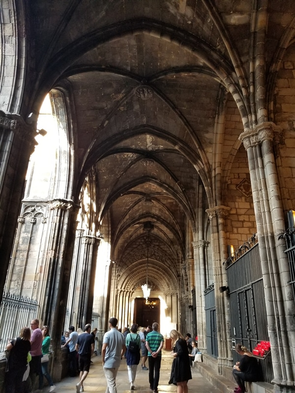 A group of people walking around Barcelona Cathedral\'s courtyard