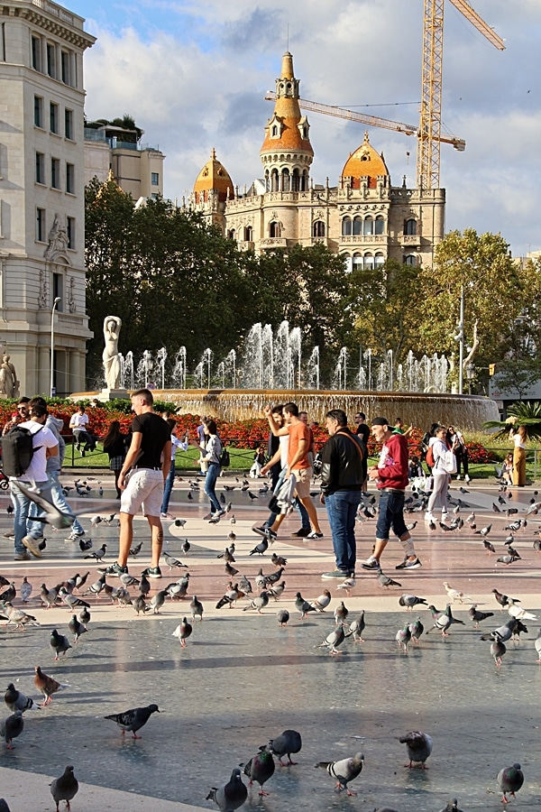 people and pigeons in a city square