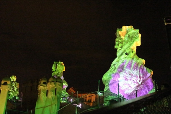 flowers illuminated on the side of stone chimneys