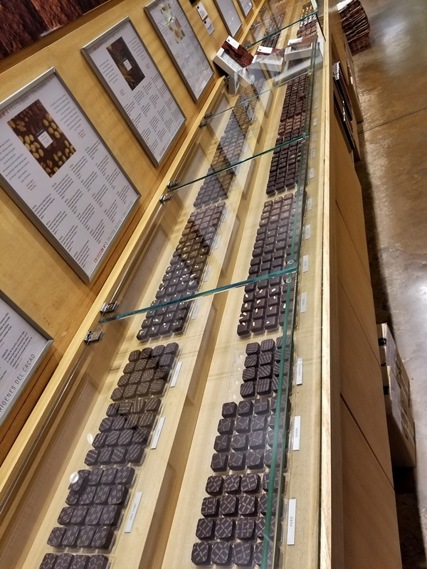 a long display case of chocolate truffles