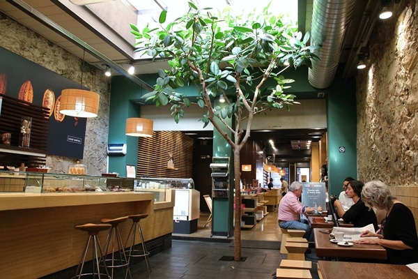 an artificial tree inside a cafe dining room