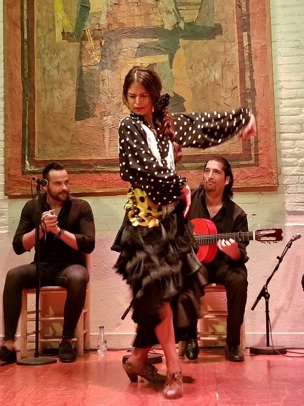 a female flamenco dancer making dramatic movements