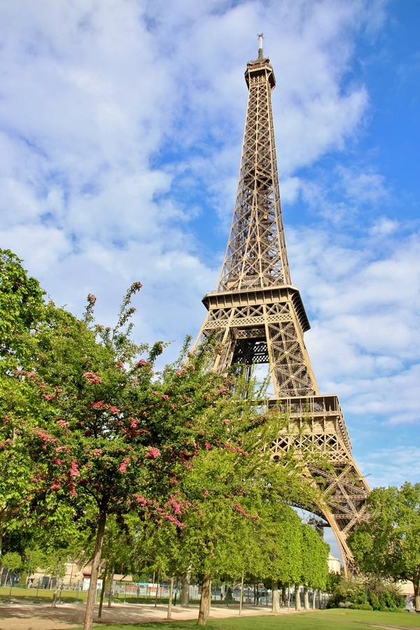 the Eiffel Tower with floral trees in front