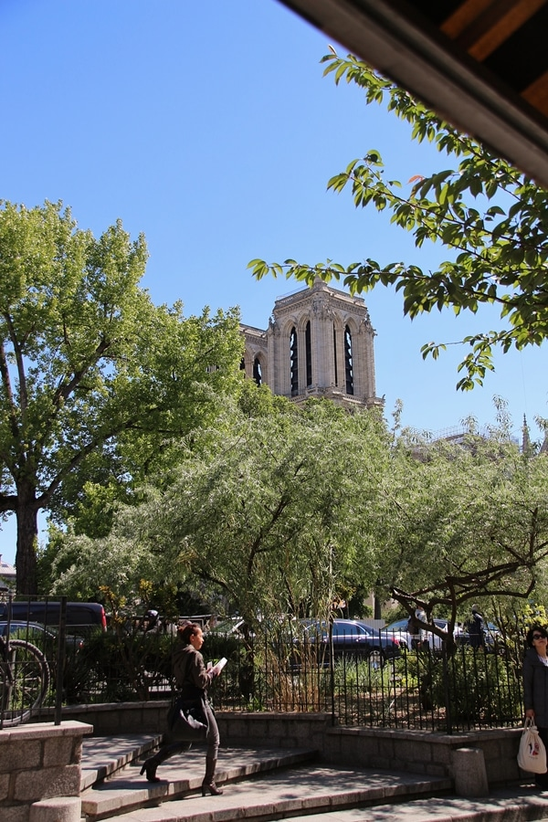 view of Notre Dame Cathedral through some trees