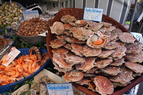 scallops in their shells, and other seafood at a farmer\'s market
